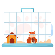 Cute Funny Hamster In Cage. Ad...