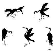 Silhouettes Of Storks. Vector ...