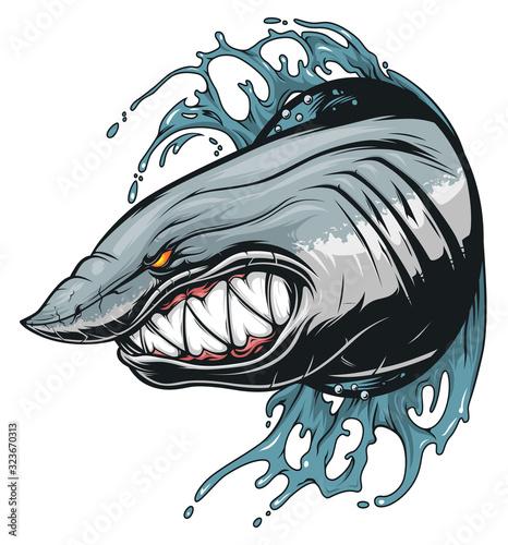 Fototapeta Anger shark in the waves