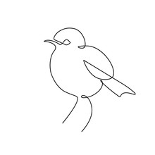 Sparrow Bird In Continuous Line Art Drawing Style. Minimalist Black Linear Sketch Isolated On White Background. Vector Illustration