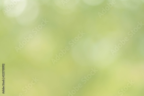 Fototapety, obrazy: Spring abstract background, blurred sun light - bokeh. Green, yellow and white dots.