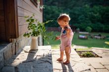 A Cute Toddler Girl Standing O...