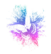Color Paint Splashes With Butterfly Isolated On A White Background. Print For The Designer