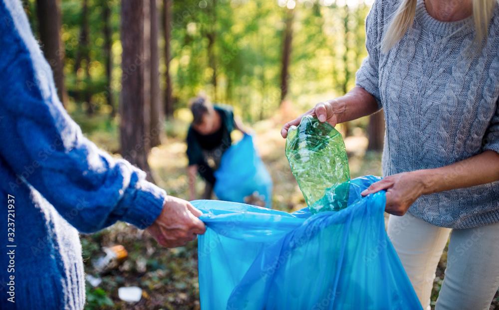 Fototapeta Senior women friends picking up litter outdoors in forest, a plogging concept.