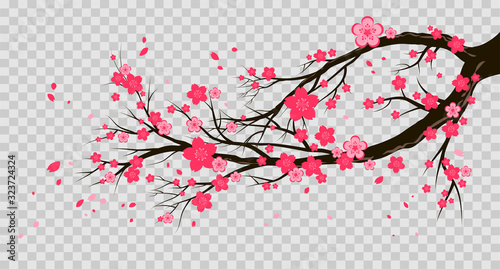 Seasonal symbol isolated on a transparent background Wallpaper Mural