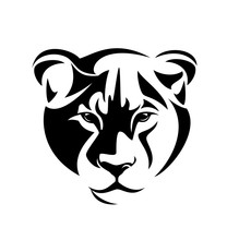 Lioness Full Face Head Portrai...