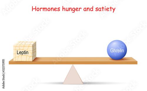 Balance of Hormones Canvas-taulu