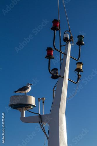 Fotografia, Obraz Detail of the mainmast and seagull