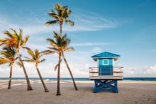 Beautiful Tropical Florida Lan...