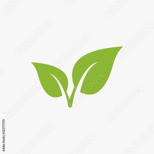 Fototapeta green leaf  vector icon, green leaf ecology nature element vector design on white background obraz na płótnie