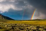 Fototapeta Rainbow - arcobaleno a yellow stone