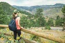 Female Hiker In The Colorado M...