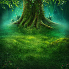 Big Tree In The Magic Forest