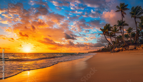 Landscape of paradise tropical island beach - 323789758