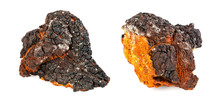 Two Pieces Of Chaga Mushroom O...