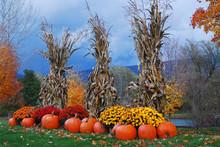 Autumn Decor Highlights A Road...