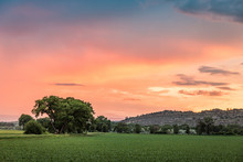 Sunset Over A Rural Setting. M...
