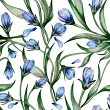 Small Blue Spring Flowers With Green Leaves Are Made In Watercolor