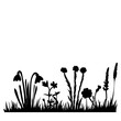 isolated, grass and flower black silhouette