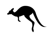 Kangaroo Black Silhouette Vector. Kangaroo Isolated On A White Background. Kangaroo Silhouette Clip Art. Kangaroo Icon Vector