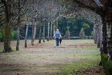 A Man With An Umbrella Walking Through A Park In The Thermal Village Of Curia In Portugal.