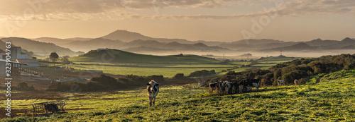 Photo agricultura tradicional