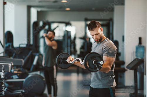 Young bearded man doing biceps exercises  in gym with barbell Canvas Print