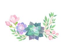 Succulent Echeveria Floral Arrangement Vector Illustration. Natural Cactus Bouquet