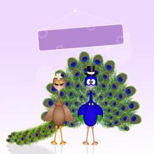 Peacocks Spouses