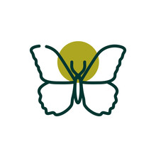 Cute Butterfly Insect Half Line Half Color Style Icon Vector Design