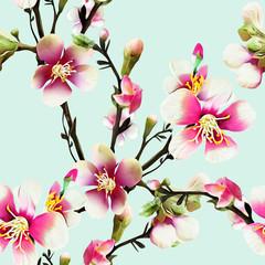 Fototapeta Ogrody Apple tree flowers Illustration. Watercolor background.