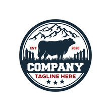 Modern Badge Angus Bull And Farm Logo. Vector Illustration.