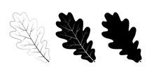 Vector Set Of Oak Leaves, Outl...