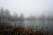 Mysterious Fog Over The Lake