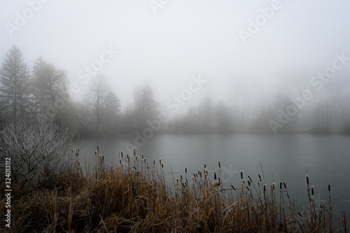 Fotomural Mysterious fog over the lake