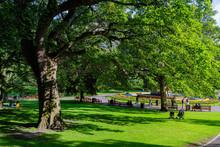 Beautiful Landscape Around The West Princes Street Gardens