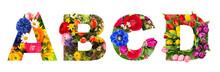 Floral Lettering Alphabet A B ...