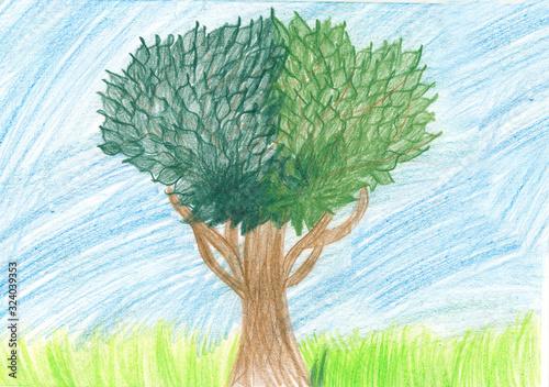 Fototapeta Rysunek dziecka, drzewo rysowane kredką obraz