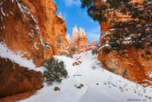 Bryce Canyon Winter Snow