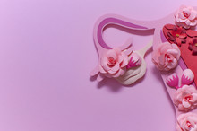 Womens Reproductive System, Pink Art Concept With Flowers, Close-up, Copy Space
