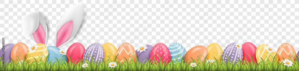 Fototapeta Easter bunny ears with easter eggs on meadow with flowers background banner transparent