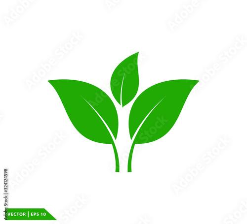 Fototapeta Leaf green ecology icon vector logo template obraz na płótnie