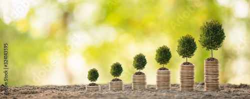 Fototapeta Coin stack on blur background. Business success or money growing concept obraz