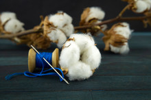 Natural Cotton Bolls With Reel...