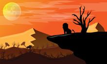 The Africa Desert Landscape