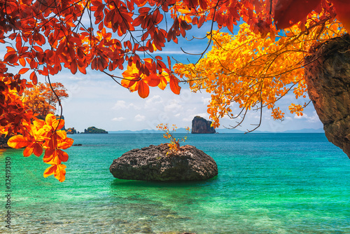 Photo Beautiful nature scenic landscape beach in colorful autumn trees Andaman sea Kra