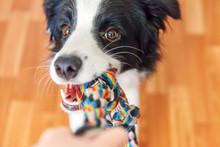Funny Portrait Of Cute Smillin...