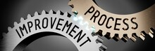 Process Improvement - Gears Co...