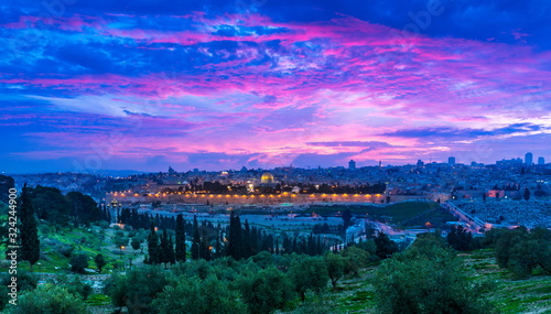Dramatic purple-pink sunset over the Old City Jerusalem: Dome of the Rock, the Golden/Mercy Gate and St Stephen's/Lions Gate; panoramic view from the Mount of Olives with olive trees in the foreground