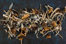 Dried Psilocybin Mushroom On B...
